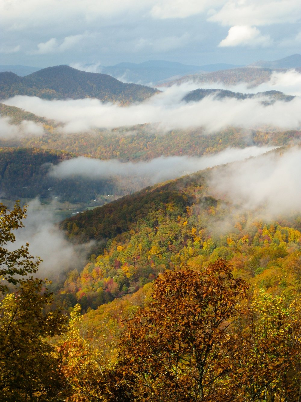 Fall Colors in Blue Ridge Mountains