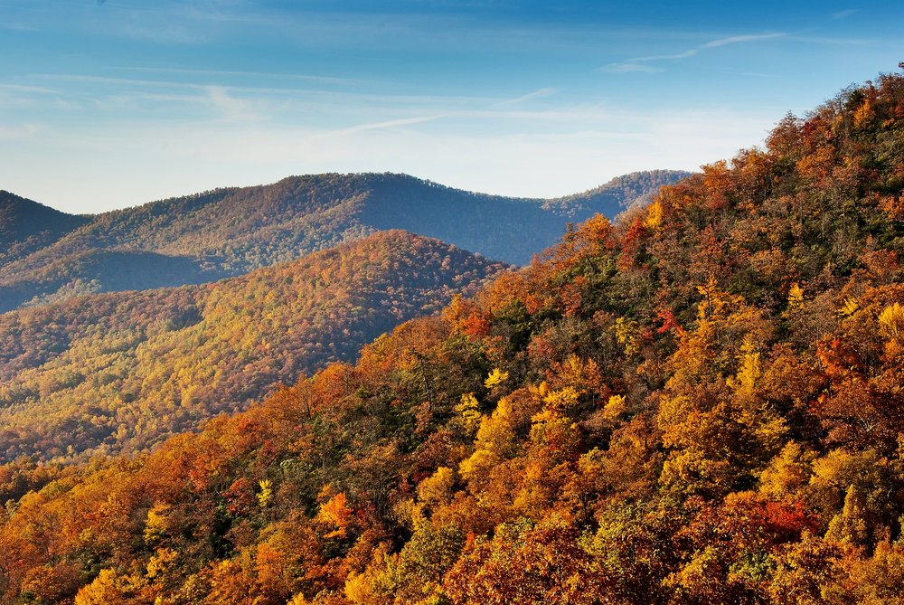 Blue Ridge Mountains in the Fall.  Photo By  Fran Trudeau , Copyright  Creative Commons 2.0