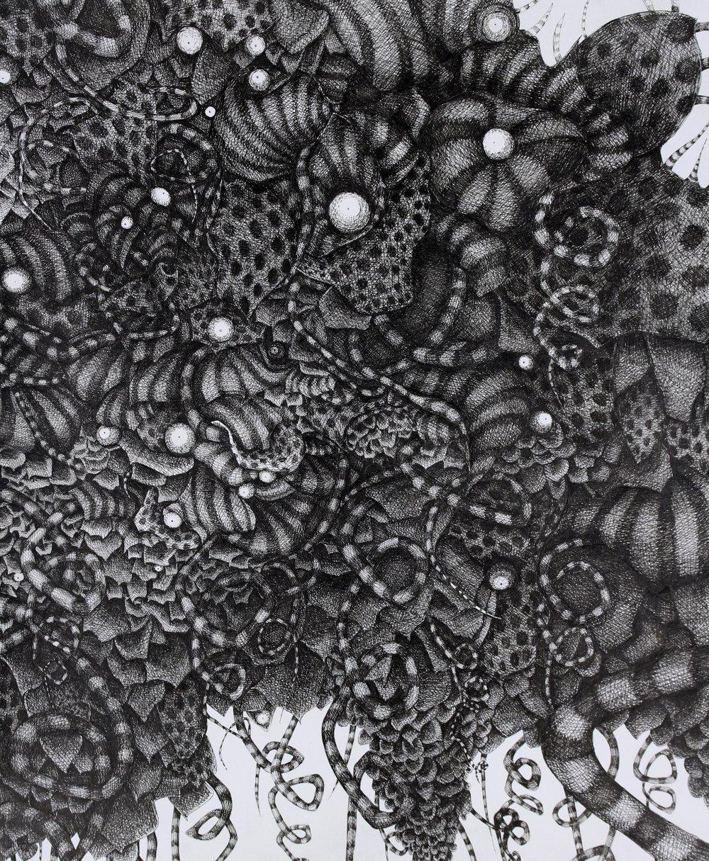 ivy. eyeballs.  | $2,500