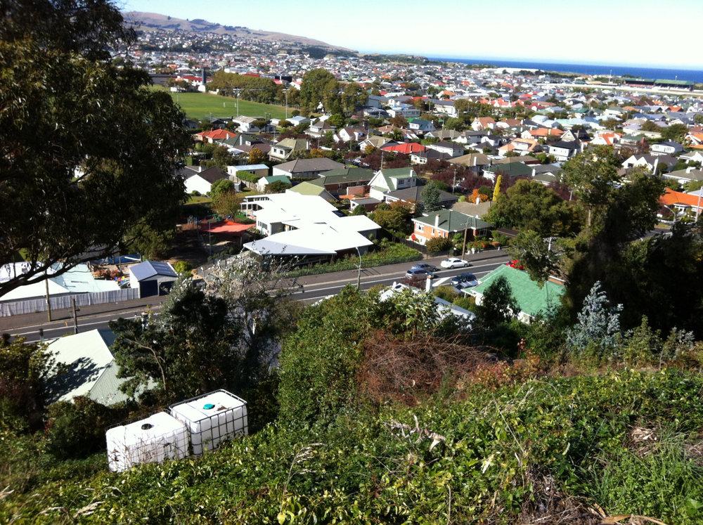 Figure 1: Urban development on the south Dunedin flatlands, 10 April 2016. Photo: Janet Stephenson