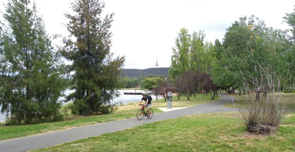 A cyclist enjoys the informal park alongside West Basin, adjoining Lake Burley Griffin (Canberra, Australia). This public space has been targeted for high-rise unit development. The proposal will involve the infilling of the lake for 45 metres beyond the end of the jetty shown in the image. Photo: Juliet Ramsay
