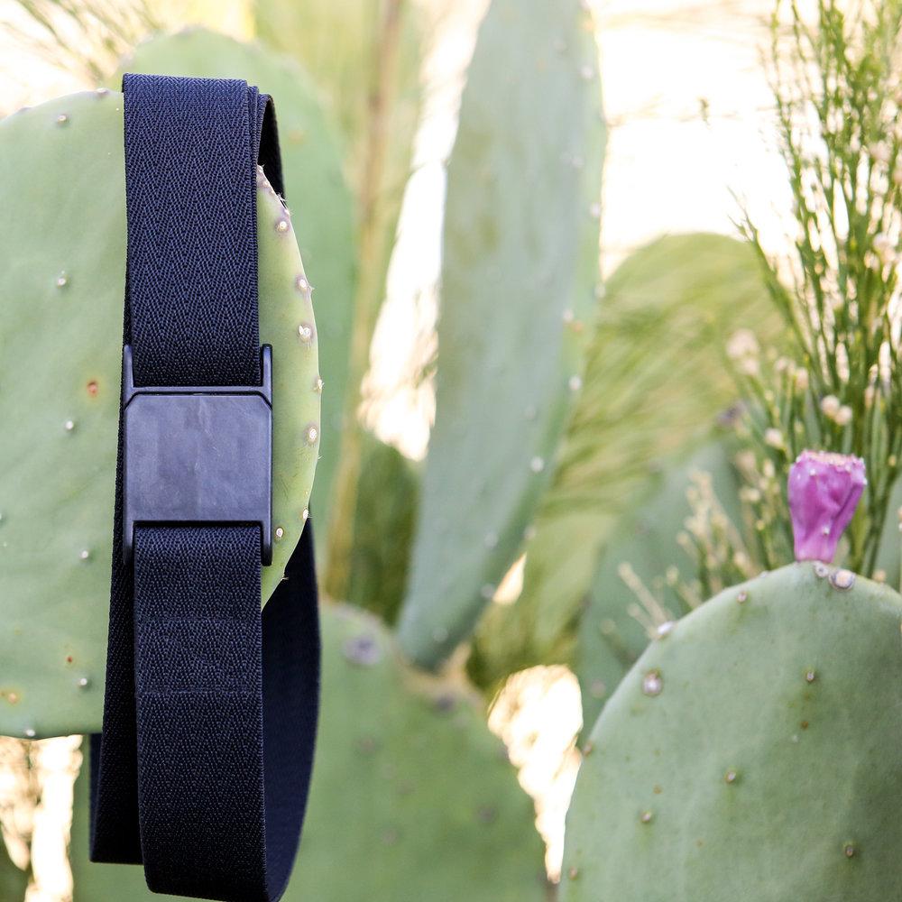 M23 Blk Cactus Sq.jpg