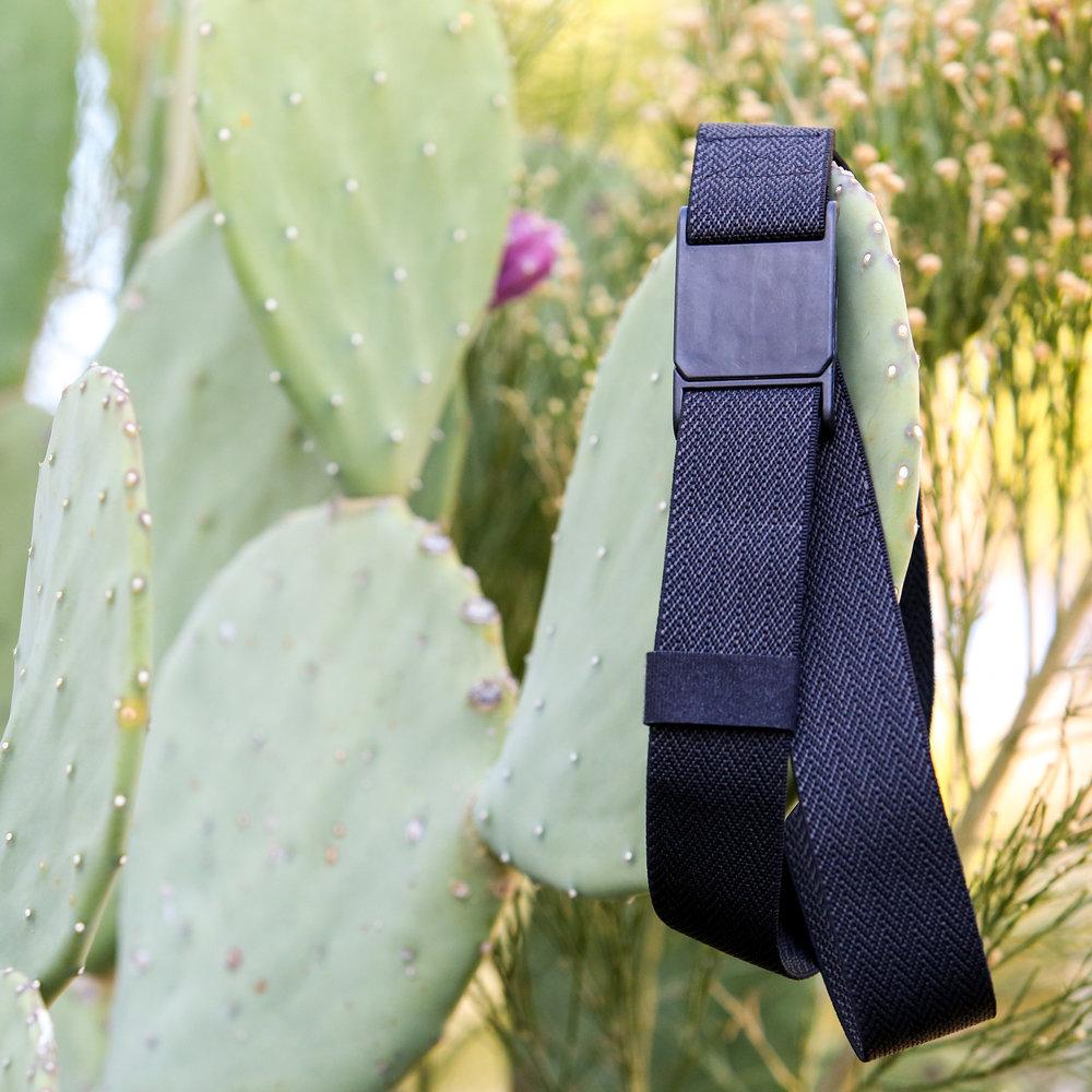 M23 OBK Cactus Sq.jpg