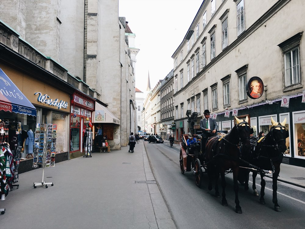 SL- Vienna streets.jpg