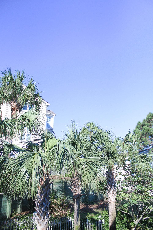 Charleston-58.jpg