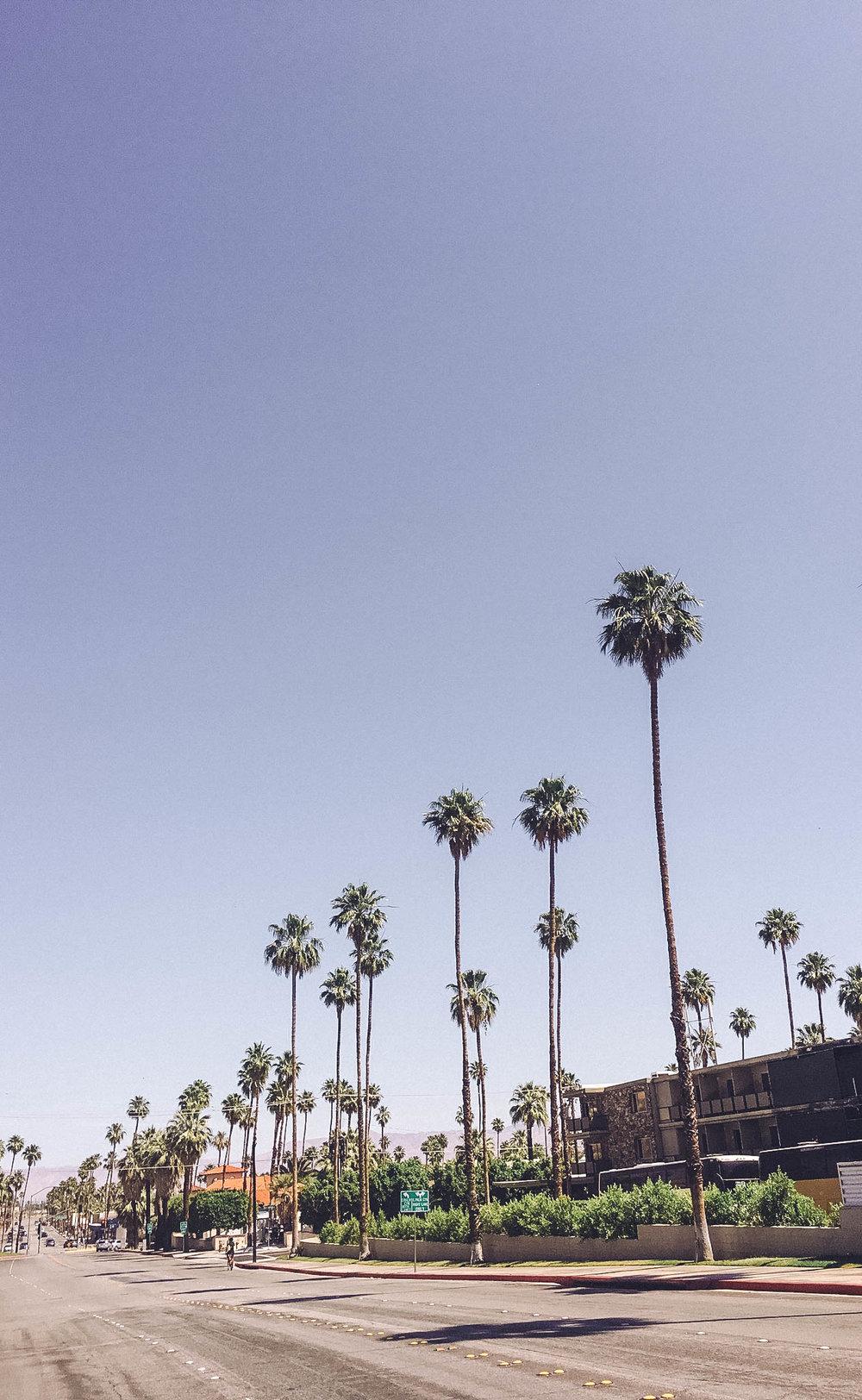 Palm Springs-15.jpg
