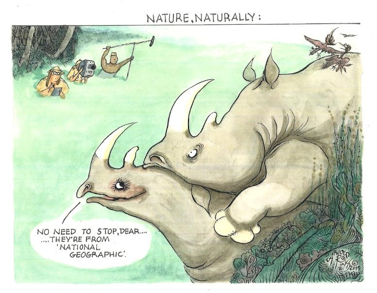Nature:rural.jpg