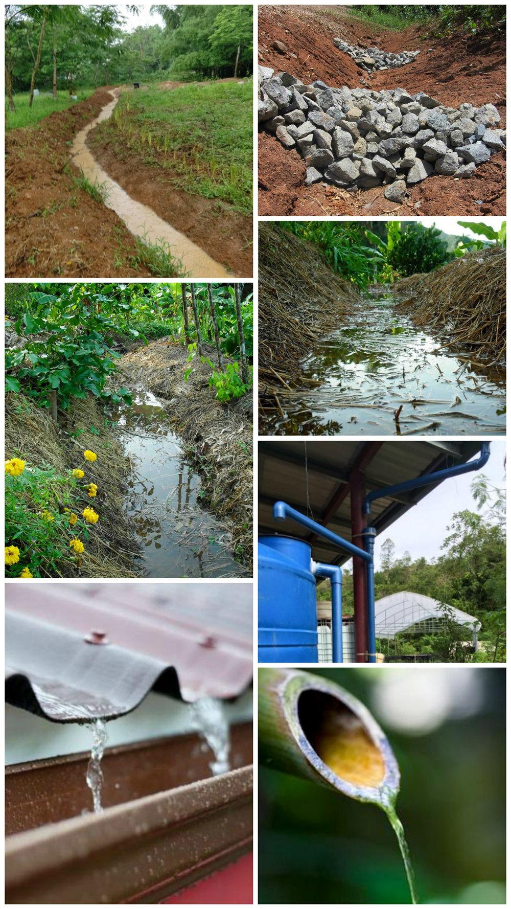 25. Opcional para el final_ Collage de fotos de agua - sec 2.jpg