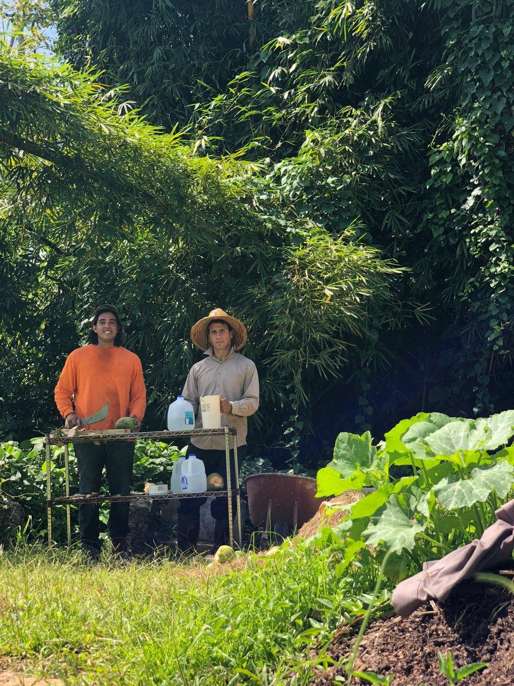 Ocatavio y Jose opening coconuts