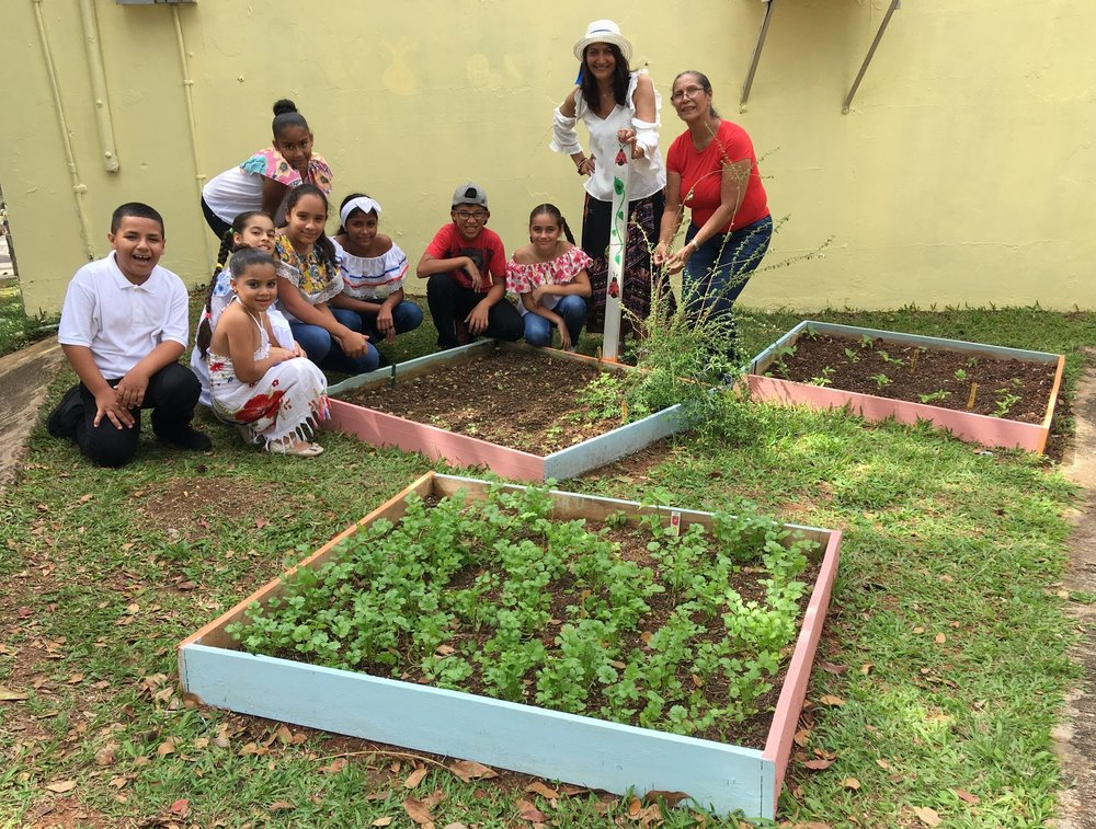 Students and faculty from Dr. Silverio Medina Gaud Elementary School pose full of joy and pride in front of their cilantro and tomato garden.