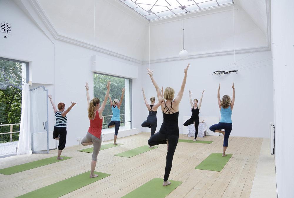 yoga_VYH2288.jpg