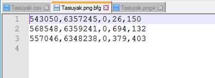 filename.ext. bfg is a BFGeoref configuration file. The information from this file will be read on subsequent uses of the program, allowing the user to fine tune the geo-referencing.