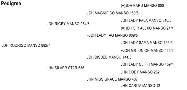 pedigree-jdh-rodrigo-manso-882-7.jpg