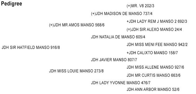 JDH SIR HATFIELD MANSO 916/8