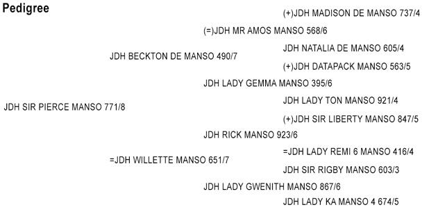 JDH SIR PIERCE MANSO 771/8