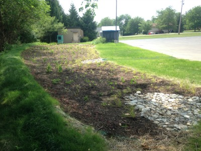 Hopewell Elementary Riparian Enhancement -