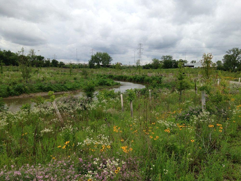 Twin Creek Preserve -