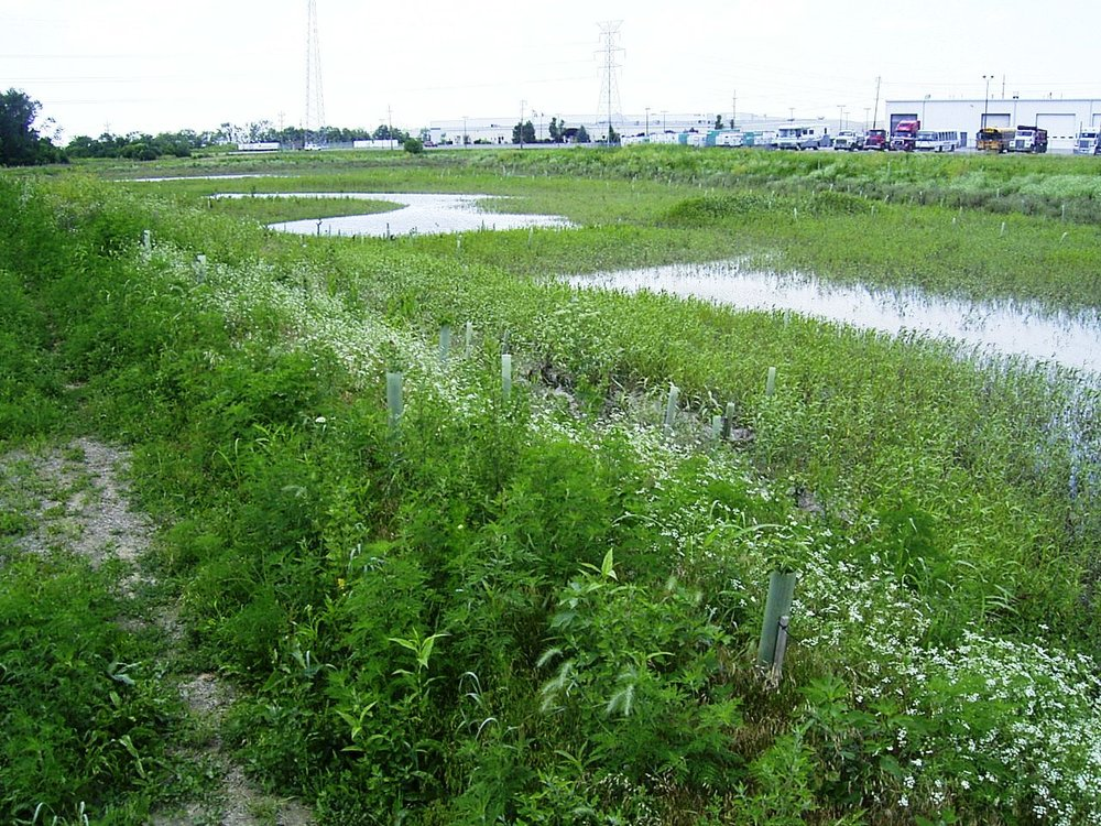 West Chester Service Center Bio-Retention Ponds -