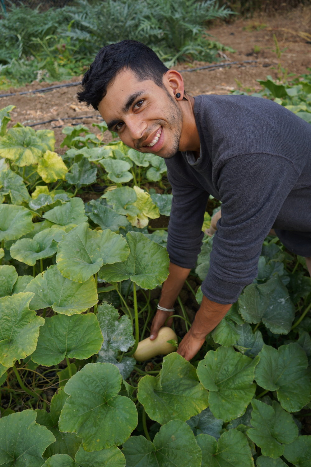 David Robles: Food Systems, Social & Environmental Justice
