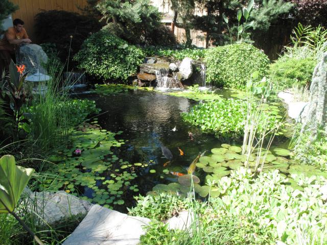 sierrawatergardens151.jpg