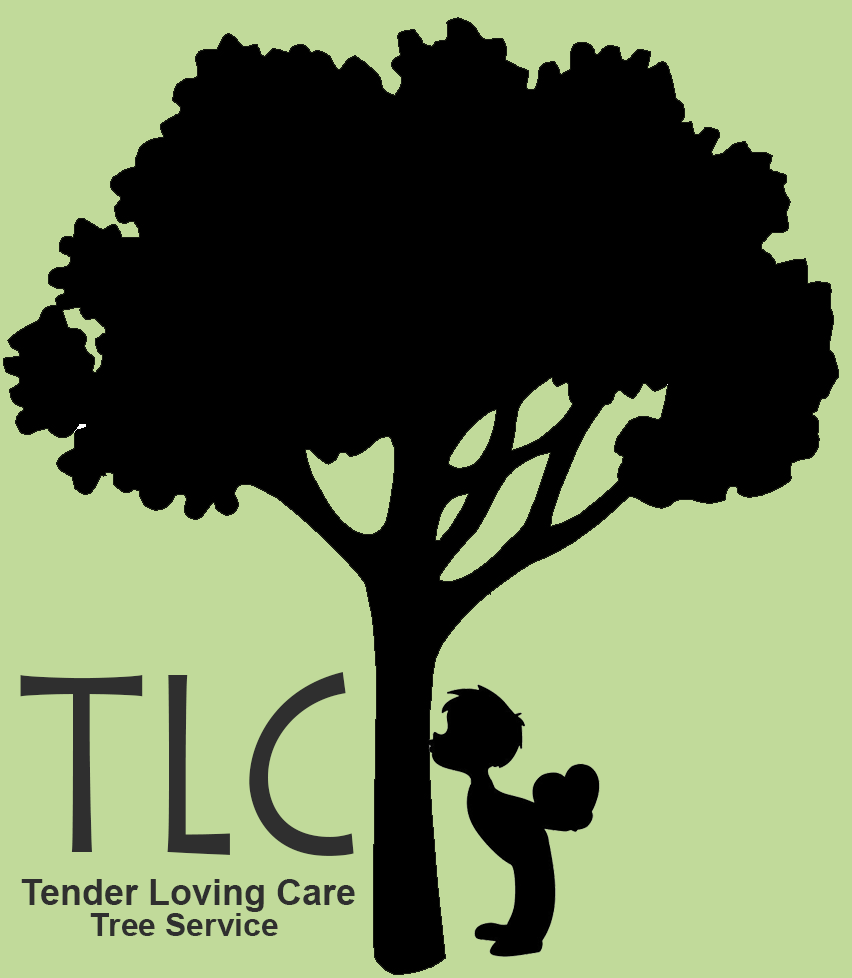 TLC Tree Services