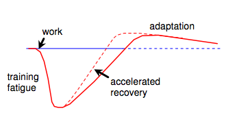 Supercompensation theory, showing the role of recovery in athletic performance.