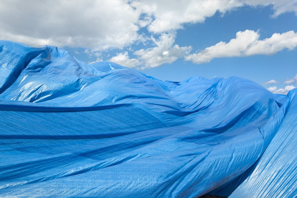 tarpscape-for-web.jpg