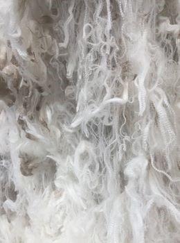 wool Kingston 1pp.jpg