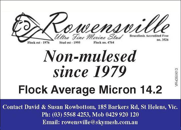 Rowensville.jpg