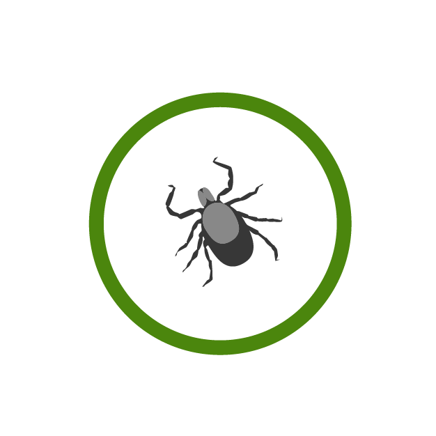 LymeDisease_Icon.png
