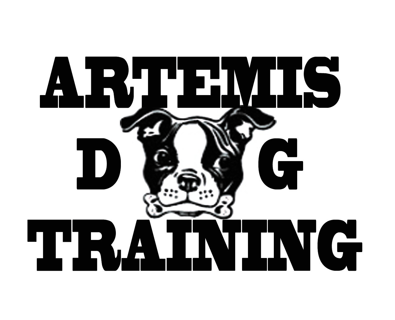 Dallas Area Dog Training | Aggression Rehab | Plano Wylie Dog Trainer