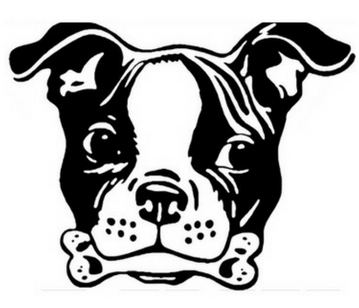 Dallas Dog Training | BOARD and TRAIN, Obedience, Aggression, Anxiety, Behaviorist | North Texas, Collin County, 75098