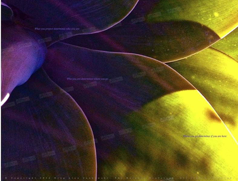 Purple flower watermark.jpg