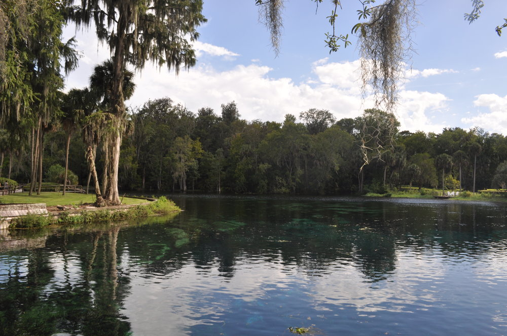 Silver Springs River, Ocala, Florida