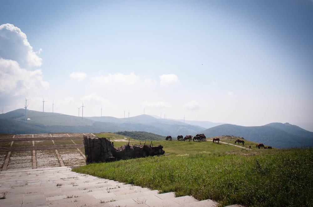 View from Buzludzha, it's a day trip from Plovdiv, with horses and mountains