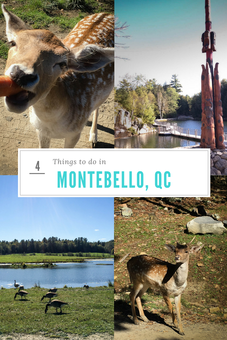 """Pinterest optimized image with """"4 things to do in Montebello"""". The collage has images of animals in the Parc Omega & totems"""