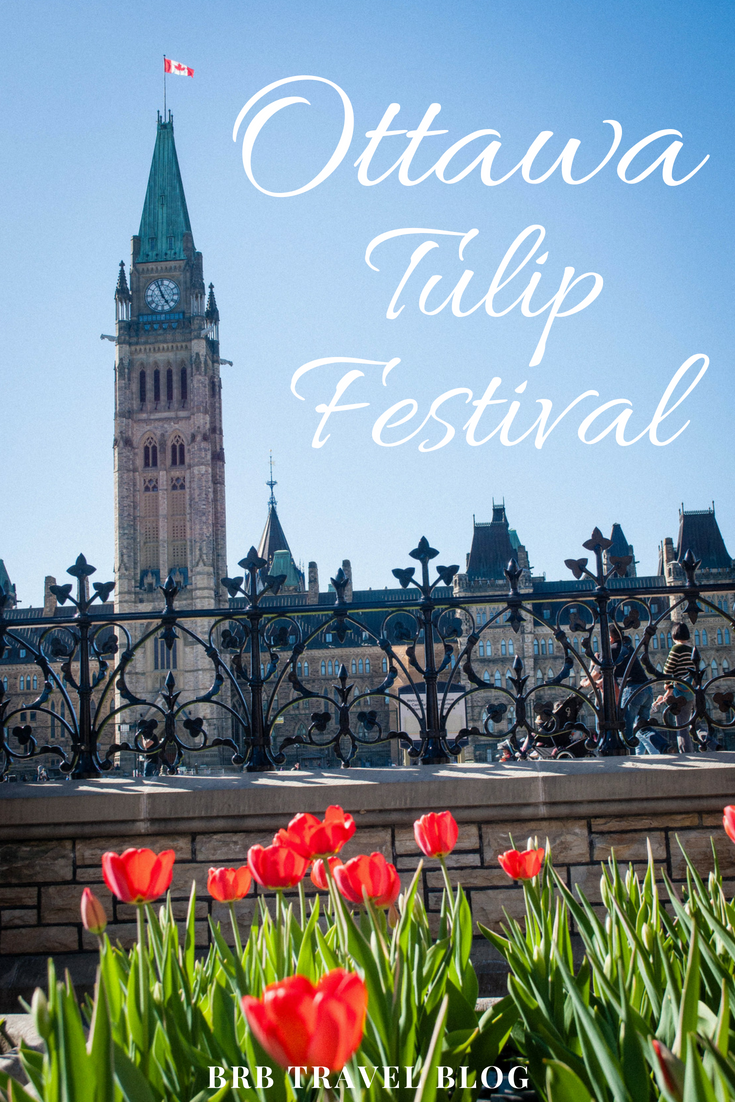 Tulips near the Canadian Parliament during the Canadian Tulip Festival