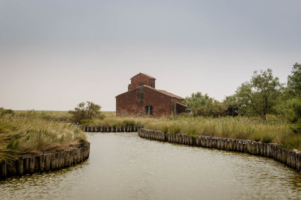 Old fishing huts in the Po Delta Park