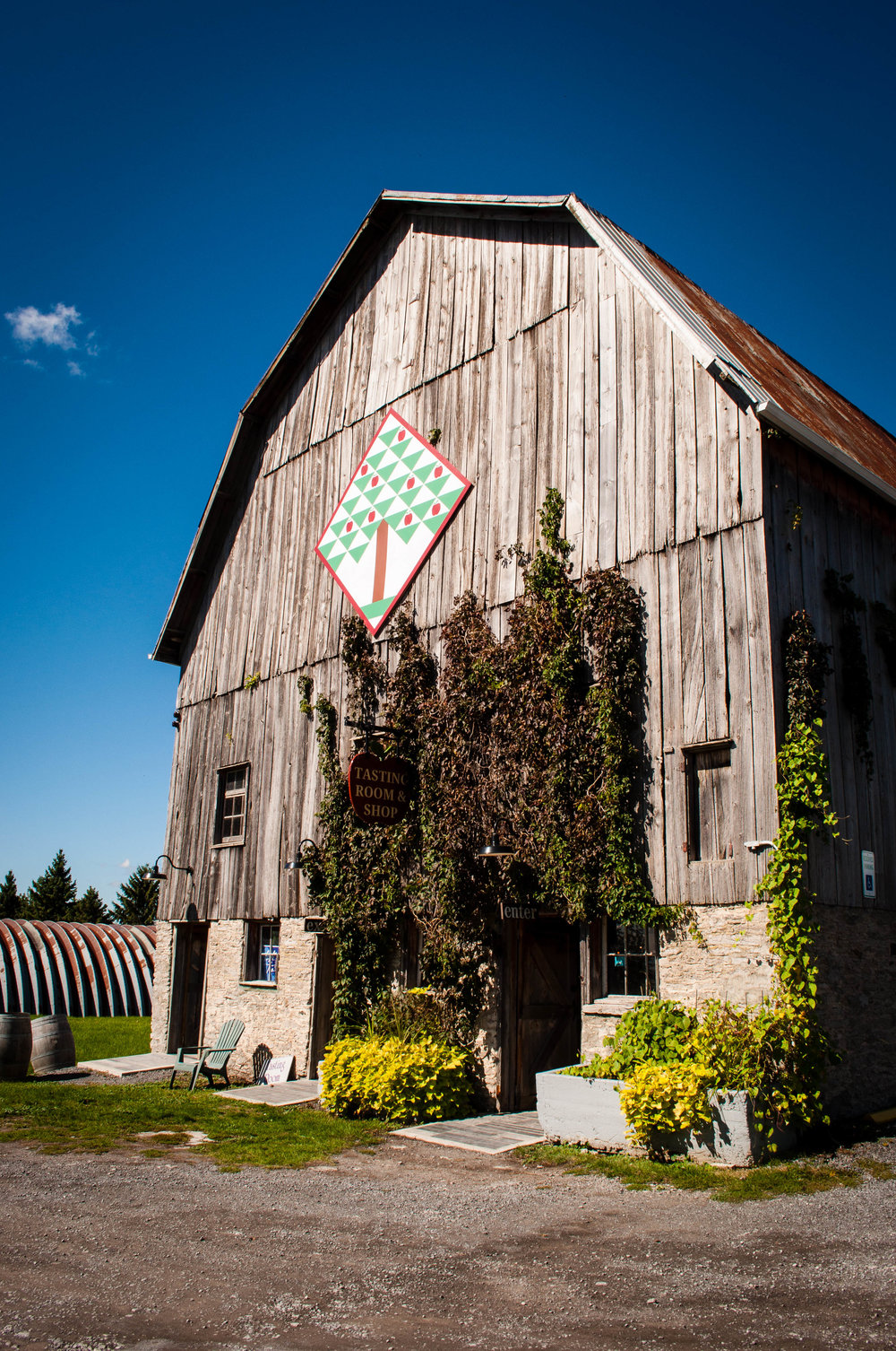 County Cider - Things to do in Prince Edward County