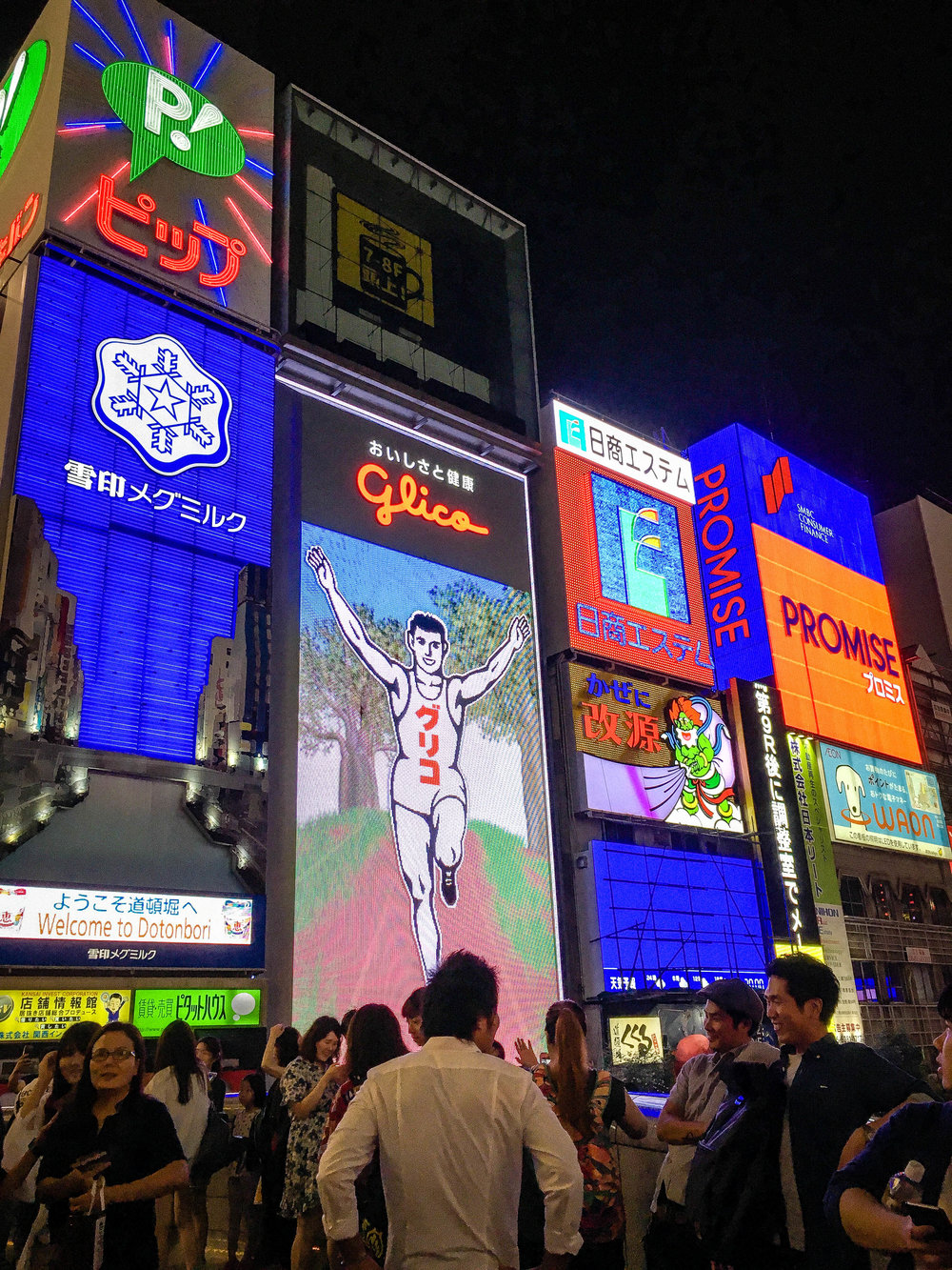 Dotonbori neon sign. Honeymoon in Japan