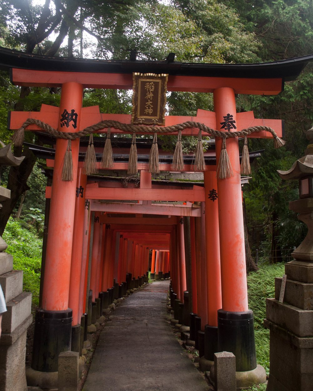 Fushimi Inari-taisha in Kyoto honeymoon in Japan