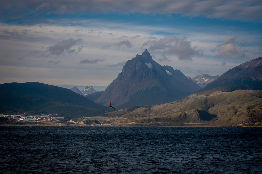 Island in the Beagle Channel