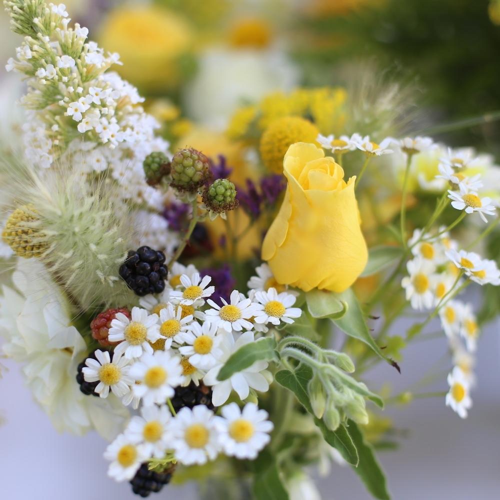 Local, sustainable flowers in Santa Cruz and Monterey counties for DIY bride or wedding flowers