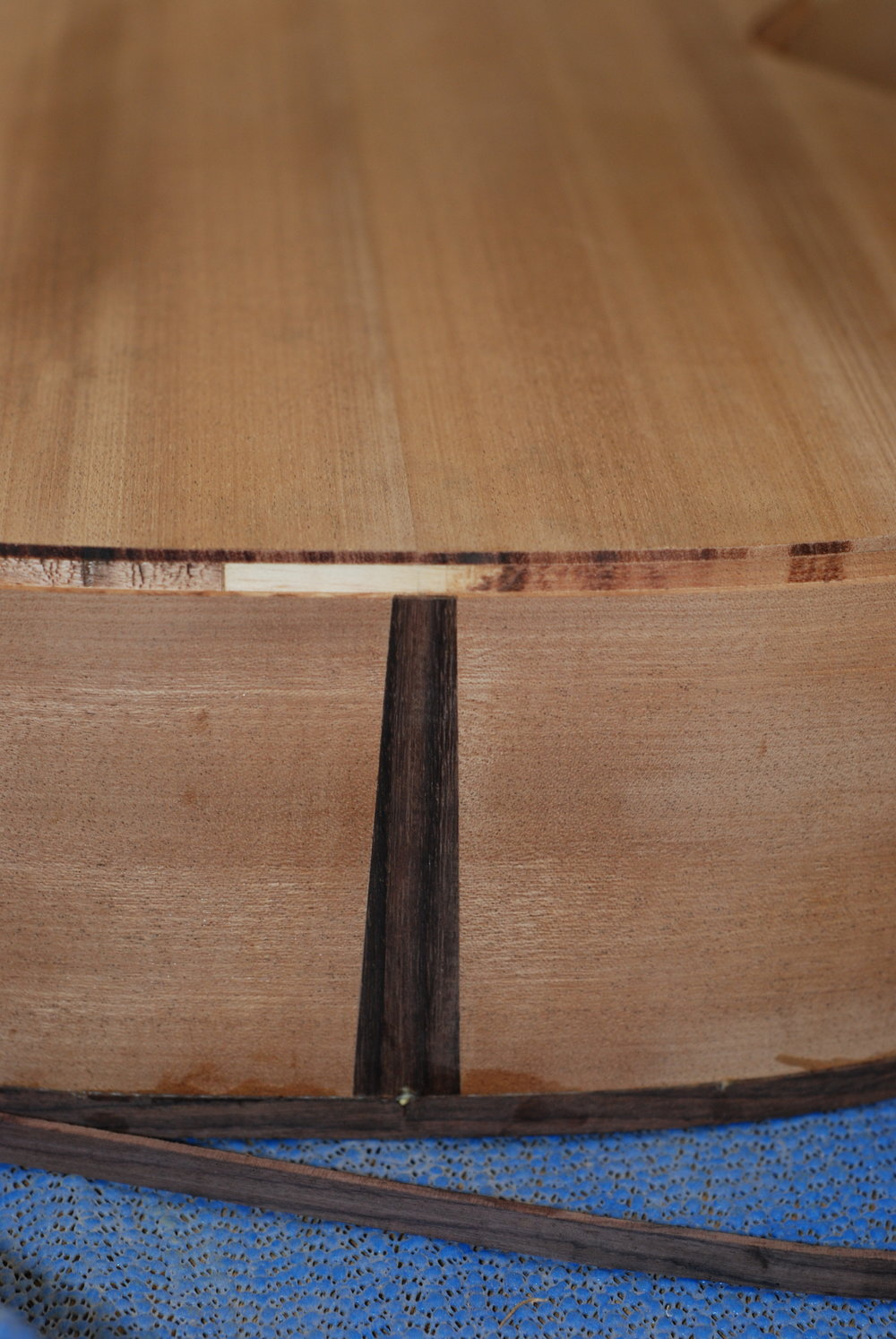 tail wedge trimmed down to same height as binding wedge.JPG