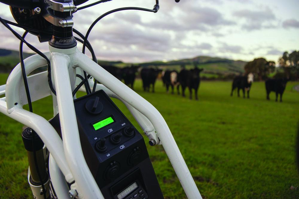 Pix 04 Bikes 15.jpg