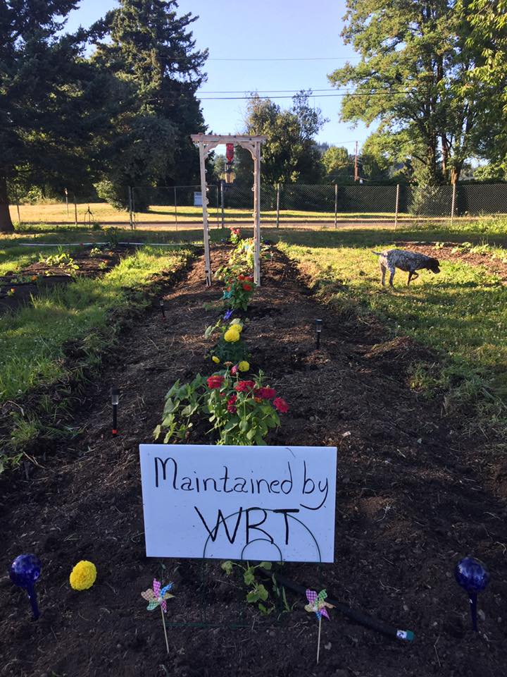 WRT's Pumpkin Patch - Located at City Hall.