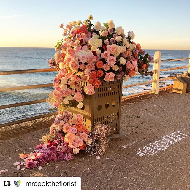 Turning the ugly into something beautiful. Love how @mrcooktheflorist flower bombed this bin! ❤️ #retail #design #retaildesign #visual #merchandising #visualmerchandising #vmlife #props #vm #windowdisplays #windows #retailstyling #styling #creative #visualmerchandiser #stylingtips #display #lovemyjob #retailrevamp #binbouqet #flowers #floral