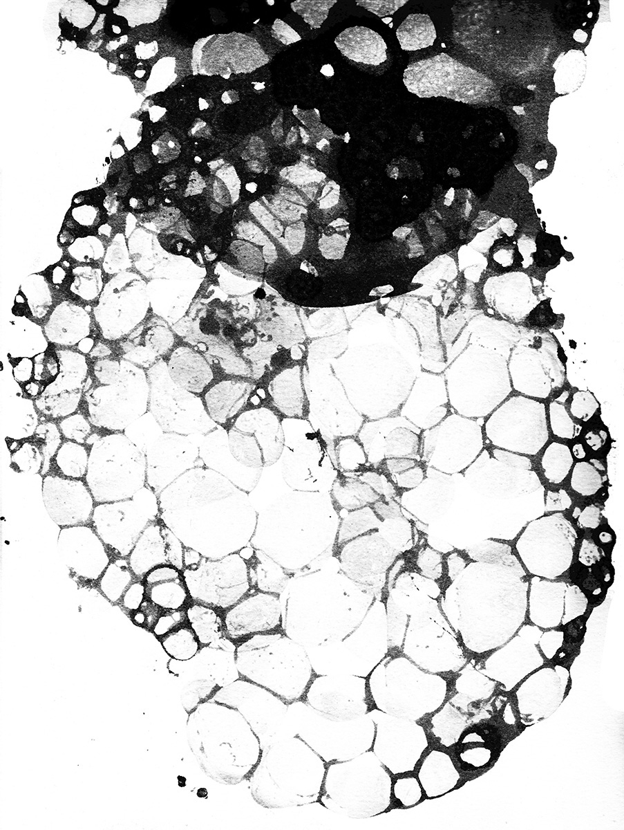 Bubble textures.jpg