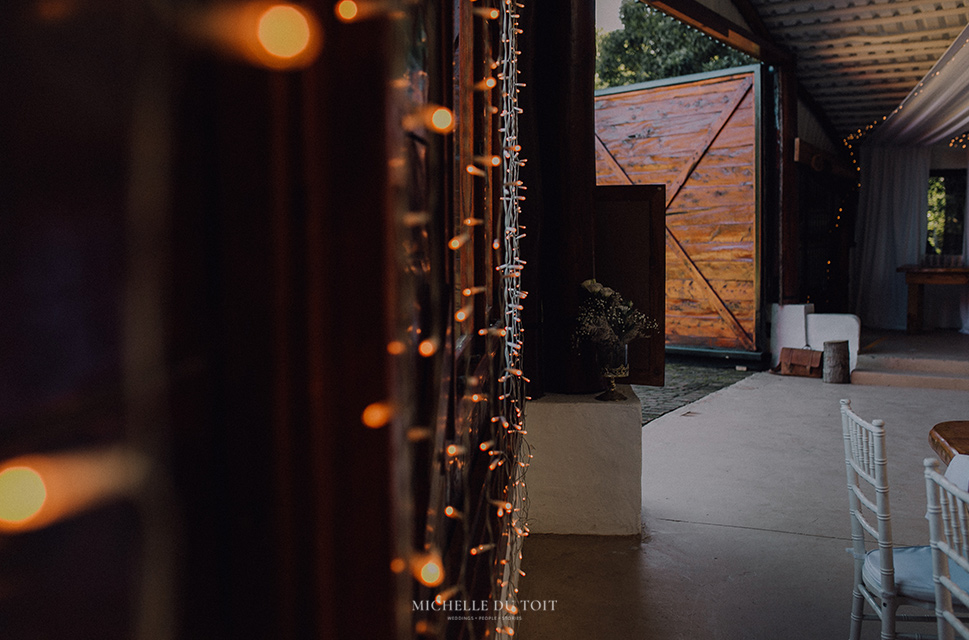 intimate-wedding-forest-venue-wilderniss-capetown-beyond-the-moon-2.jpg
