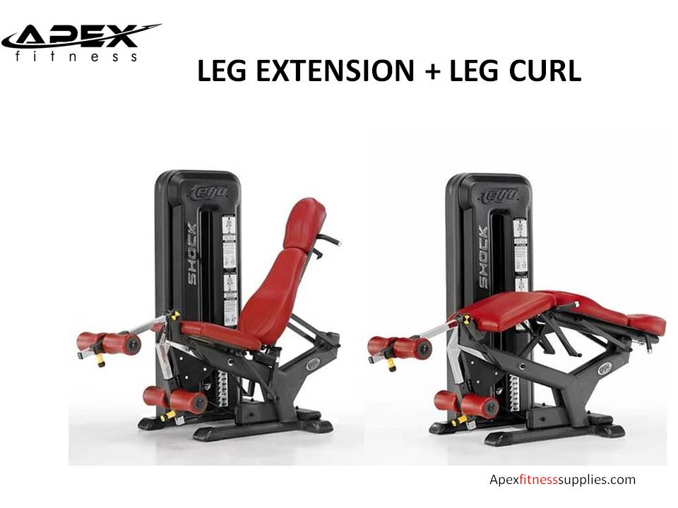 SEATED LEG EXTENSION + LEG CURL